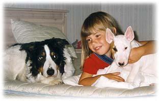 Barn med hundar i sängen