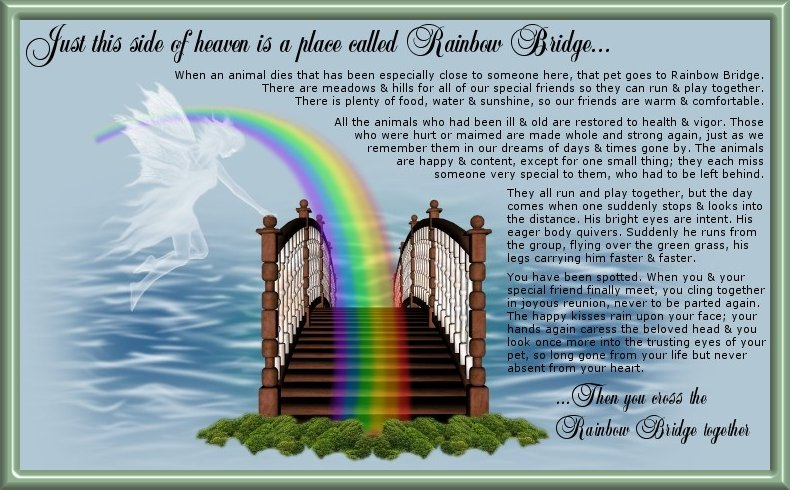 rainbow-eng