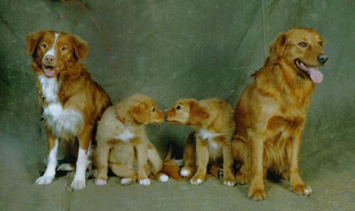 Vilma, Elsie, Eliska, Harry mars -06